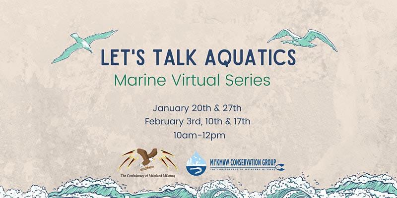 Let's Talk Aquatics
