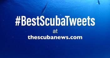 BestScubaTweets