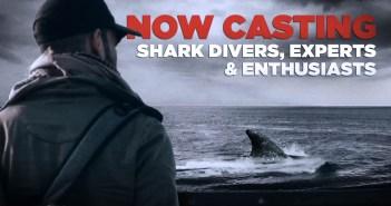 Shark Casting