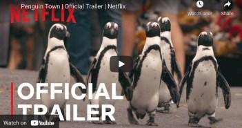 Netflix Penguins