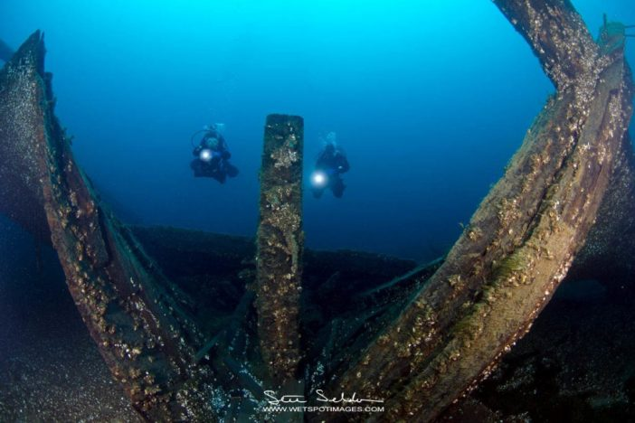Diving the Arabia