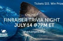 Shark Angels Trivia Night