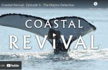 Marine Detective