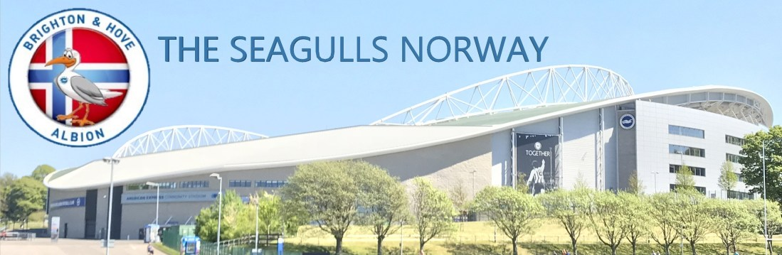 Logo_TheSeagullsNorway_2018-2019_5-mini_75