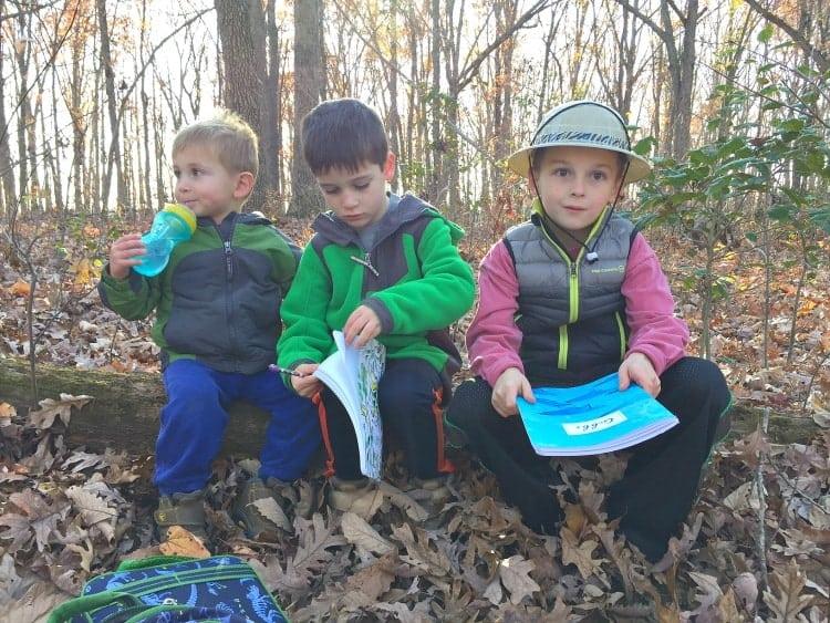 boys-on-log