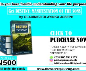 Click Here to Get The Book Destiny:Manifestation of The Sons