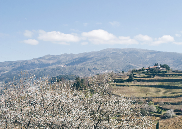 A wine-fuelled stay in the Douro Valley | These Four Walls blog