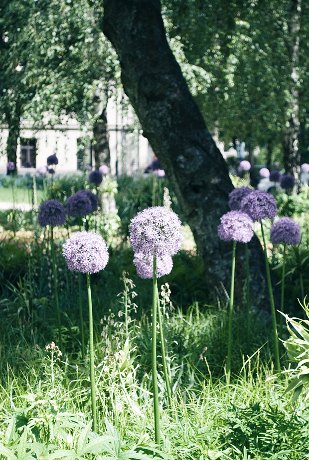 A midsummer stay in Oslo | These Four Walls blog