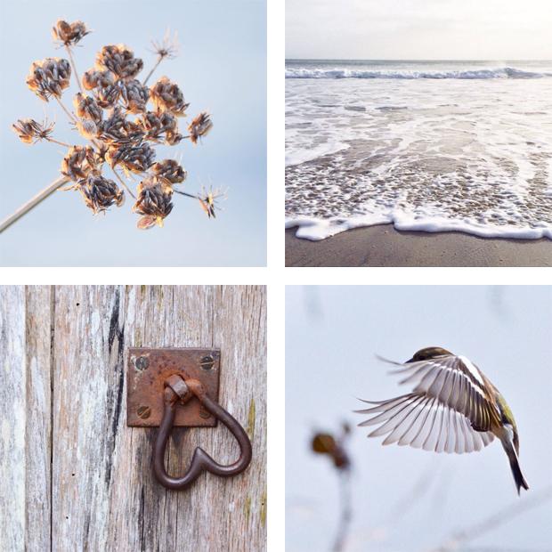 Instagram Inspiration | That Cornish Bird | These Four Walls blog