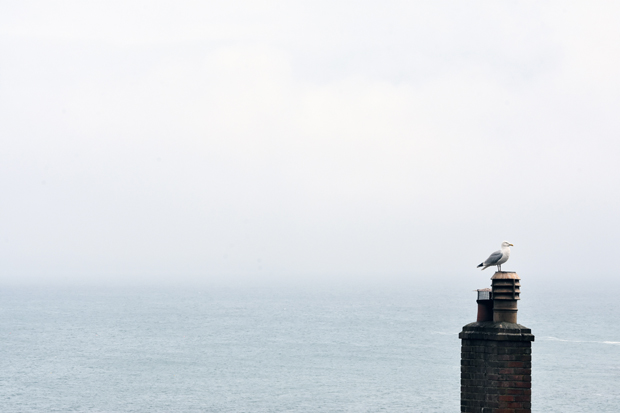 A misty day on the Cornish coast | These Four Walls blog