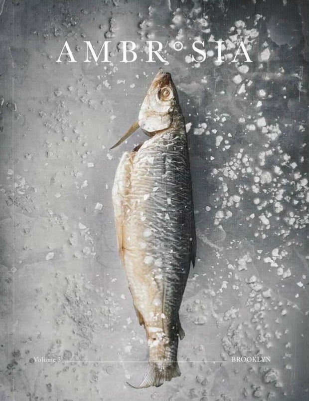 Ambrosia - 10 independent magazines to inspire your travels in 2019 | These Four Walls blog