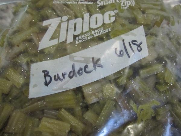 Burdock, ready to freeze
