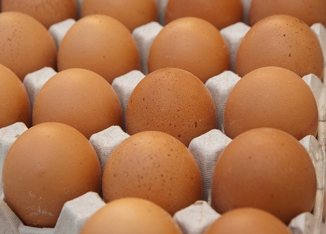 How to Feed Your Hens for Best Egg Production - The Self Sufficient HomeAcre