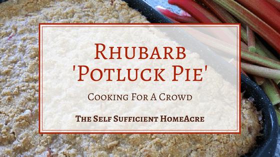 Rhubarb Potluck Pie