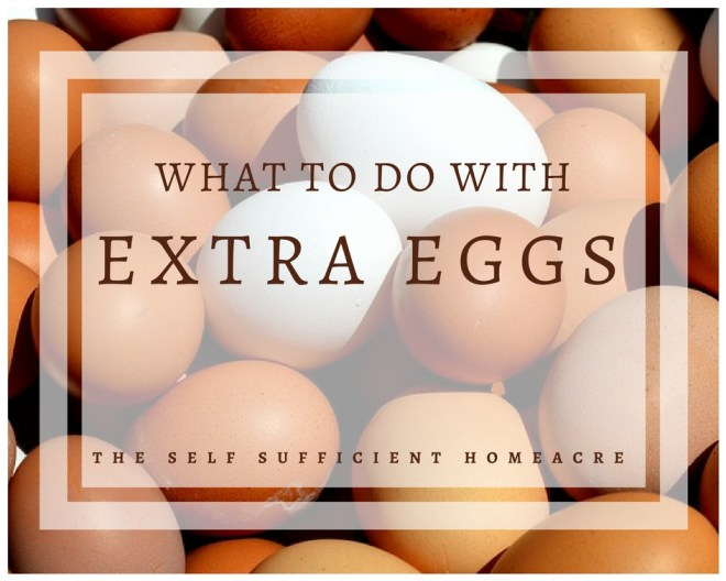 What to Do With Extra Eggs - The Self Sufficient HomeAcre