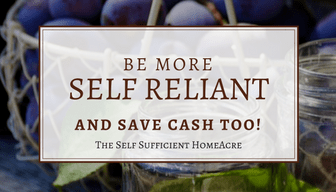 Be more self reliant banner