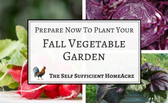 Plant fall vegetables