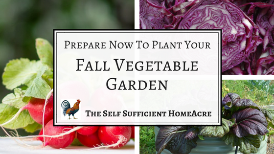 Plant fall vegetables