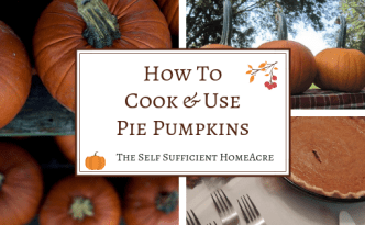 How to Cook and Use Pie Pumpkins