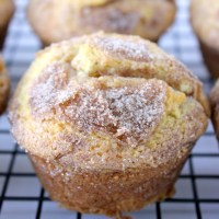 Amish Cinnamon Muffins (Quick Amish Friendship Bread Muffins)
