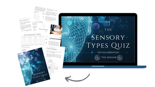 The sensor Sensory Report from The Sensory Coach