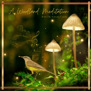 A Woodland Meditation with binaural beats from The Sensory Coach