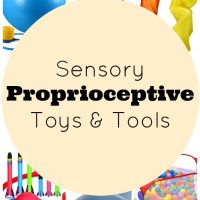 Proprioception Toys & Tools