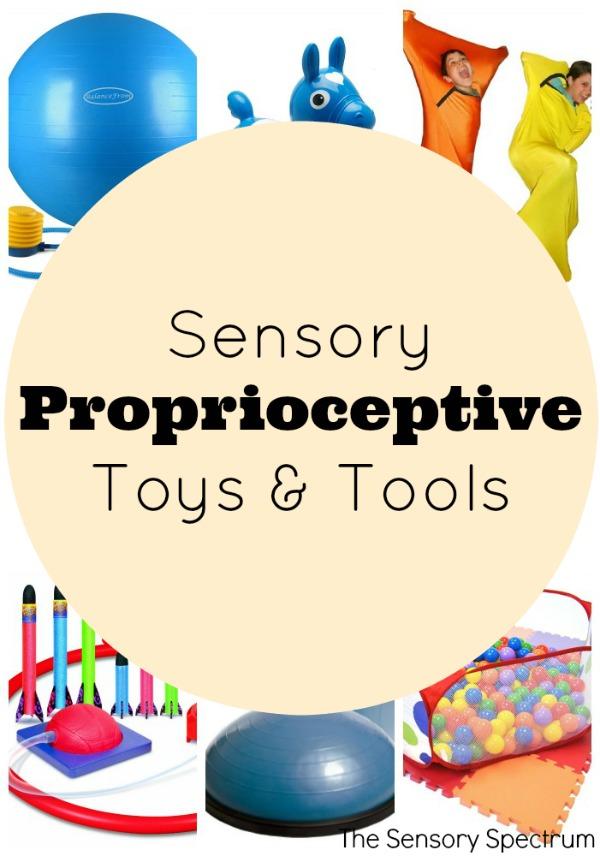 Sensory Proprioceptive Toys & Tools
