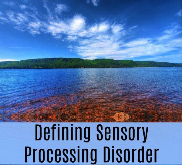 Defining Sensory Processing Disorder