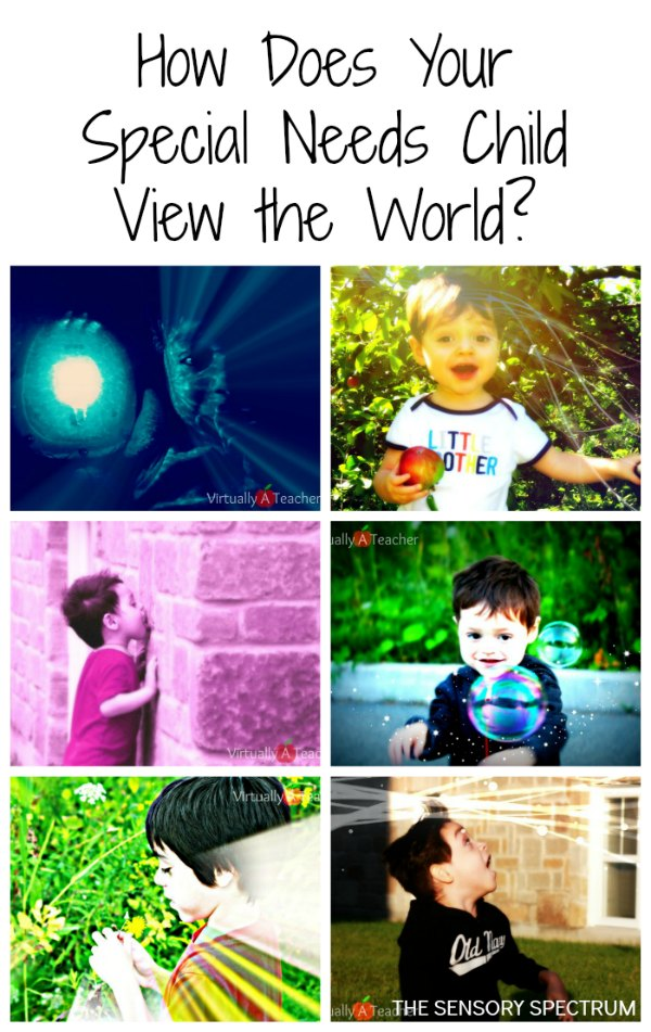 How Does Your Special Needs Child See the World | The Sensory Spectrum