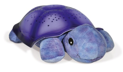 Twitlight Turtle Purple