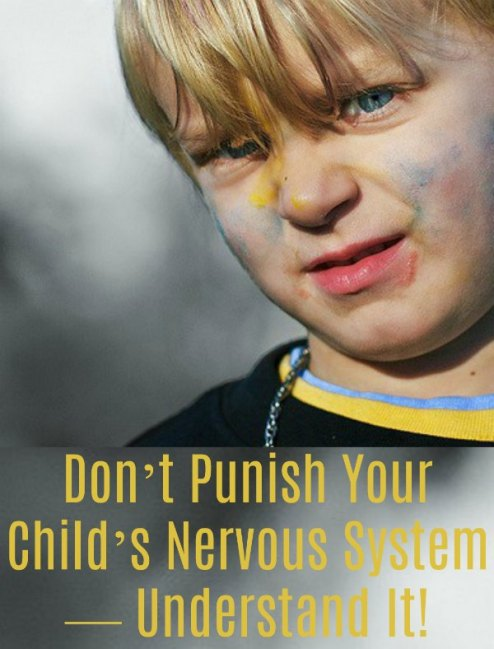 Don't Punish Your Child's Nervous System — Understand It!