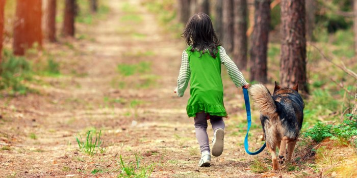 Dogs De-Stress Families with Autistic Children