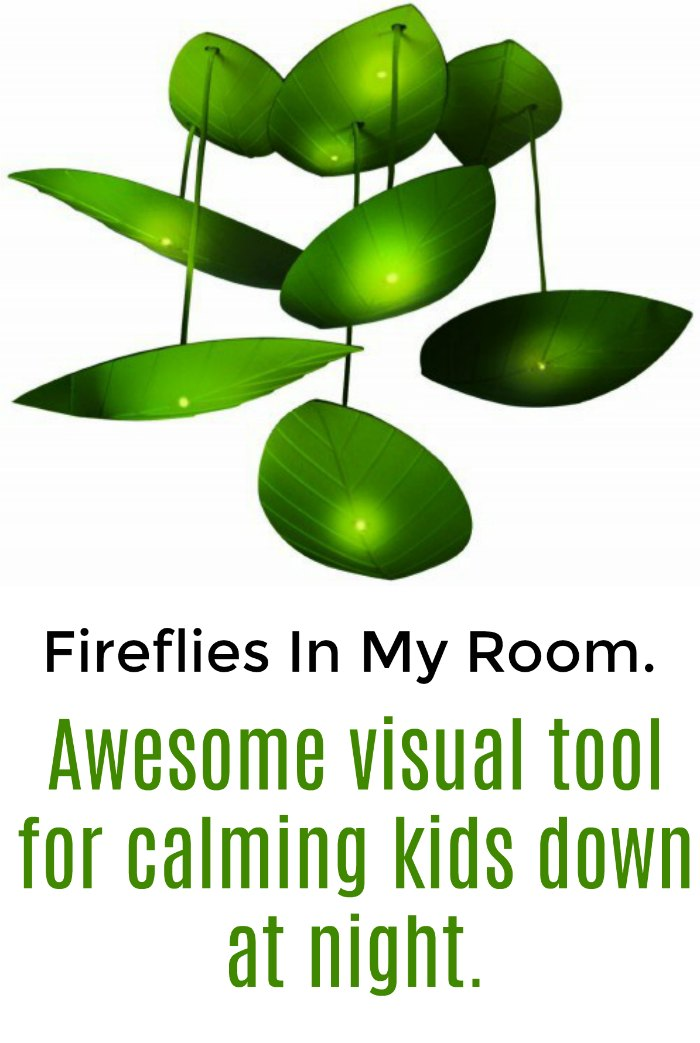 Fireflies in my room. Awesome visual tool for calming kids down at night.