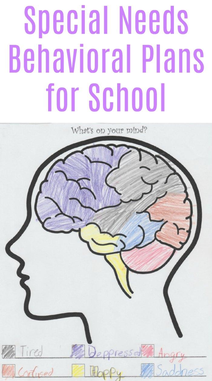 Special Needs Behavior Plans for School