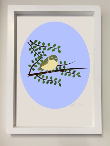 Illustration of a tauhou or waxeye displayed in a white frame.