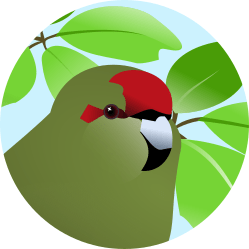 an illustration of the head of a kakariki shown in a circle. There are leaves in the background.