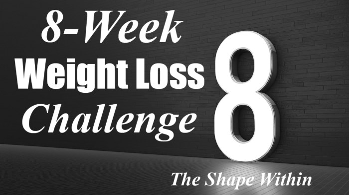 8 week challenge diet and exercise plan the shape within