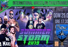 Report IWE SummerStorm 2019