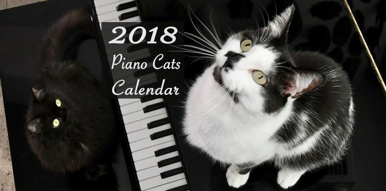 piano cats calendar cover shoko shorty kodi