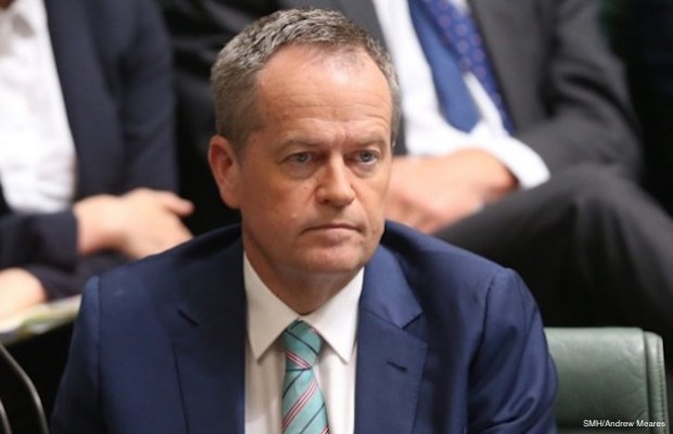 bill shorten poll