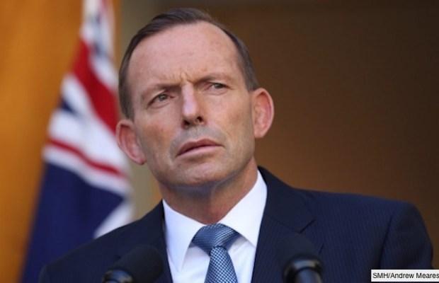 tony abbott PM again