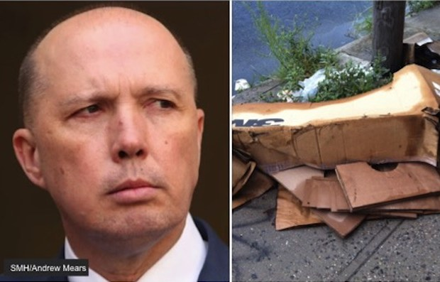 dutton cardboard box