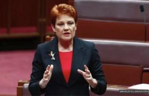 Pauline hanson in parliament