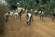 Road rehabilitation work