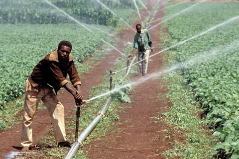 investing-african-agriculture-2