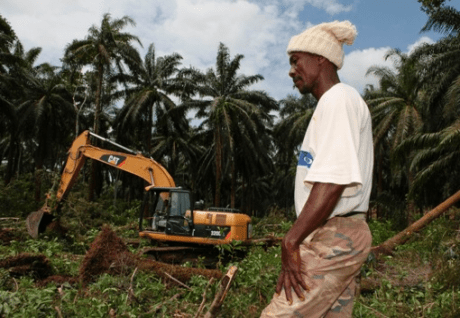 land grab farmers salone