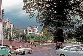 parliamentary history – cotton tree 1970 jpg