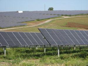 solar farm3
