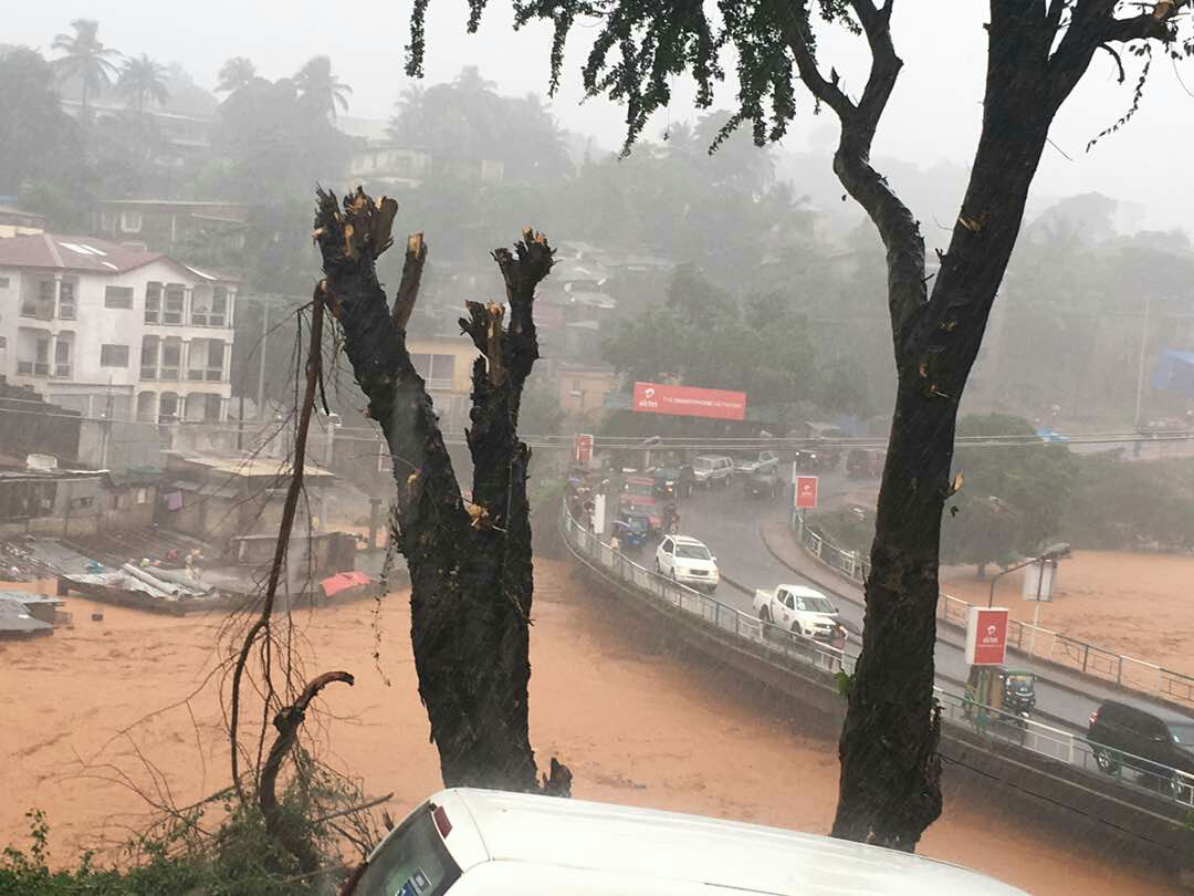Night-time mudslide buries alive hundreds in Sierra Leone homes